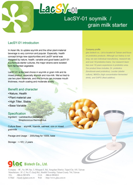 soymilk,grain milk ,starter