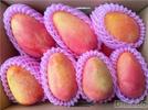 Mango (Mì xuě)