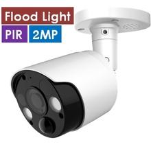 H.265 2.0MP Flood Light PIR IP Camera