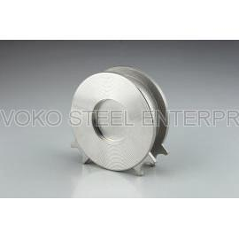 Stainless Steel Wafer Type Spring Check Valve