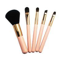 nylon hair makeup brush Set
