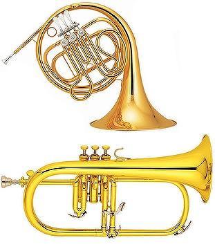 taiwan trumpet trombone french horn euphonium baritone