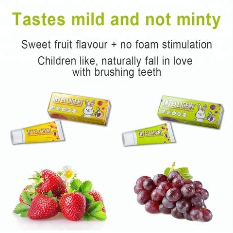 INTELLIGENT Toothpaste for Toddlers under 2 non Fluoride