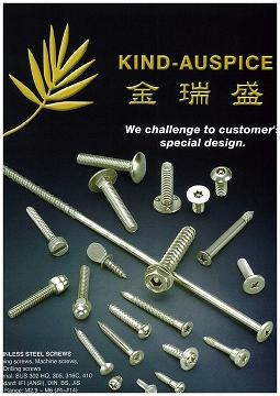 Stainless Stell Screw