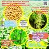 Organic Soybean  Farm