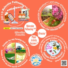 Overview of Molecular Pollinating tech series