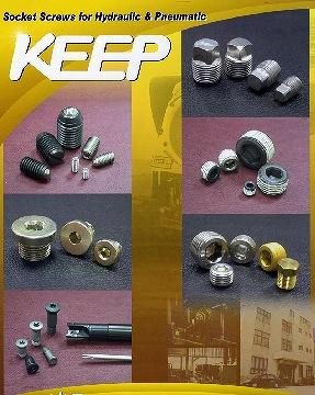 socket screws for Hydraulic & pneumatic