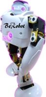 BeRobot_16+1 Profession Kits Unassembly