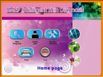 Skin S.M.E.P. Analysis + Customer management system)