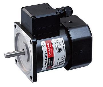 6W-150W Induction Motors
