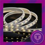 Two Tone Dimmable LED Strip Lights - 2835 DC24V