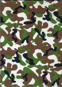 Plain Dyed  , POLYESTER FABRIC  CPF-5237-C(58)