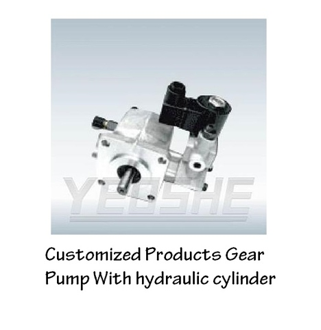 Customized Products Gear Pump With hydraulic cylinder