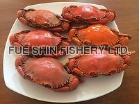 Frozen Cooked Mud Crab