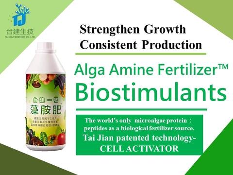 Alga Amine Fertilizer™Tai Jian No.1