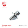 Big Plain Washer Sems Screws