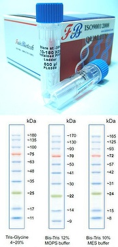 Magnetic Beads Genomic DNA Kit (Virus)