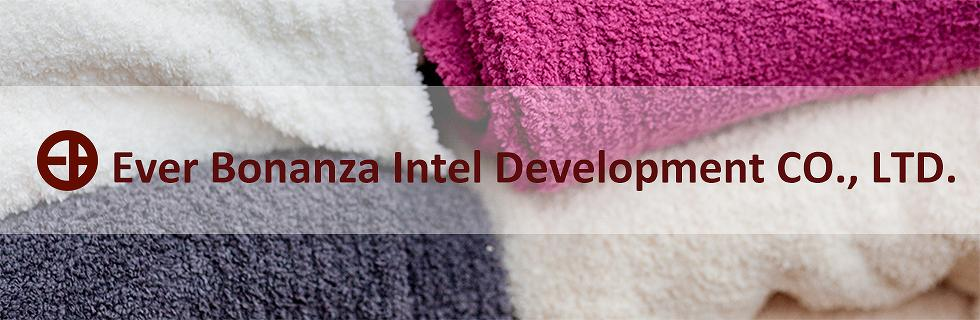 Ever bonanza Intel Development CO., LTD._1