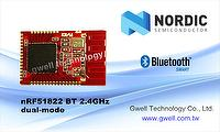 Taiwan Nordic nRF52810 2 4G BT5 Module | GWELL TECHNOLOGY CO