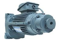 Reduction Brake Motor